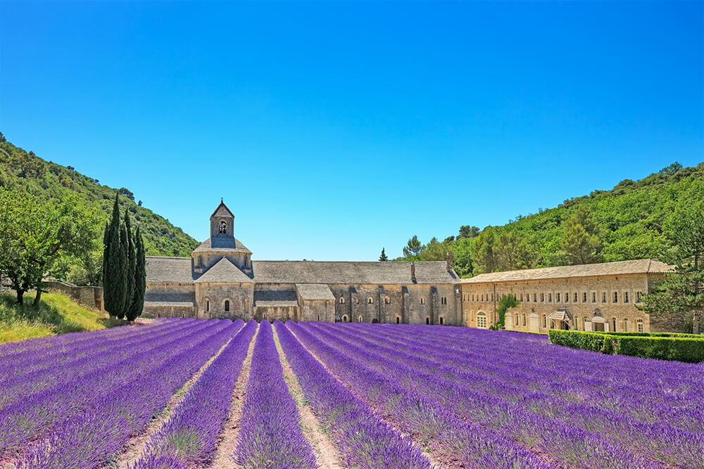 Provence and Luberon wedding