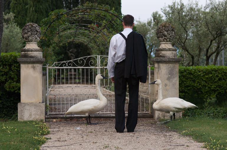 destination wedding - Provence wedding - K and B's wedding